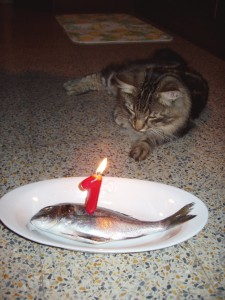 chi spegnerà la candelina?